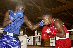 National boxing League