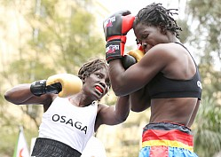 OSAGA PROMOTION BOXING
